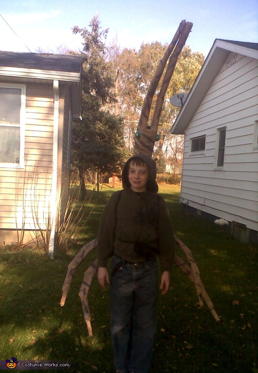 Walking Stick (Stick Bug) - Homemade costumes for boys