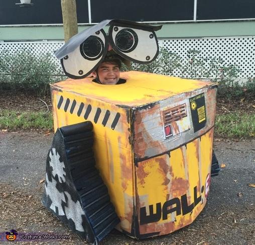 Wall-E Costume
