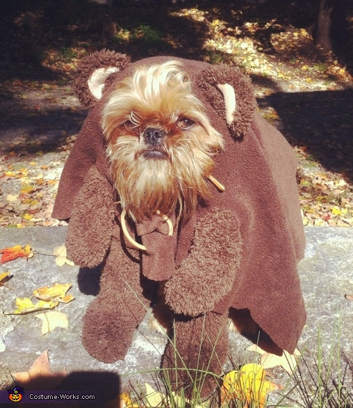 homemade ewok costume for dogs. Black Bedroom Furniture Sets. Home Design Ideas