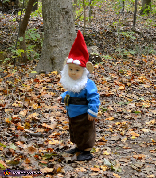 Wandering Gnome Homemade Costume