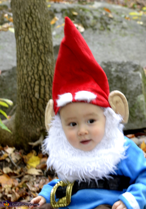 sc 1 st  Costume Works : baby gnome costume  - Germanpascual.Com
