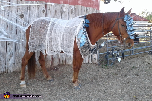 War Horse Homemade Costume