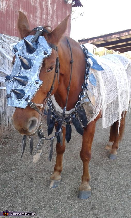 War Horse Homemade Costume