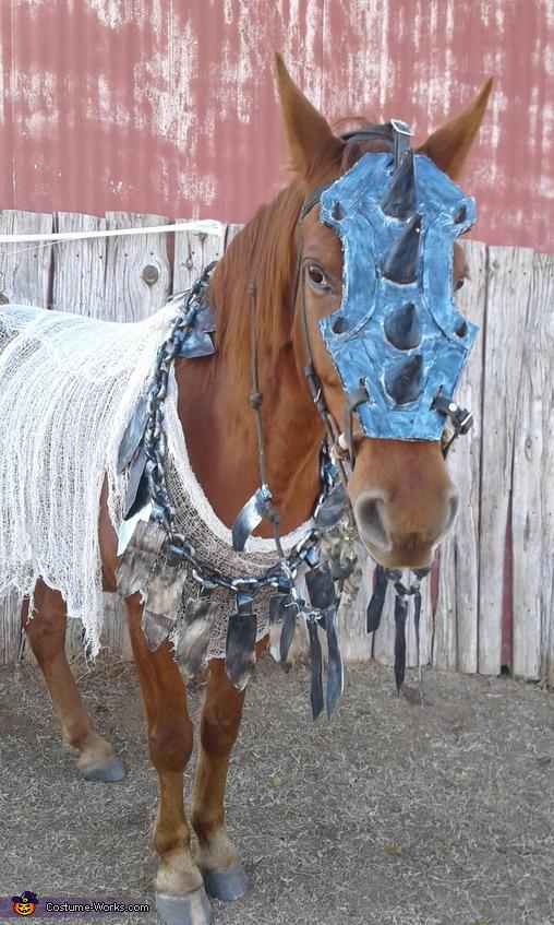 War Horse Costume