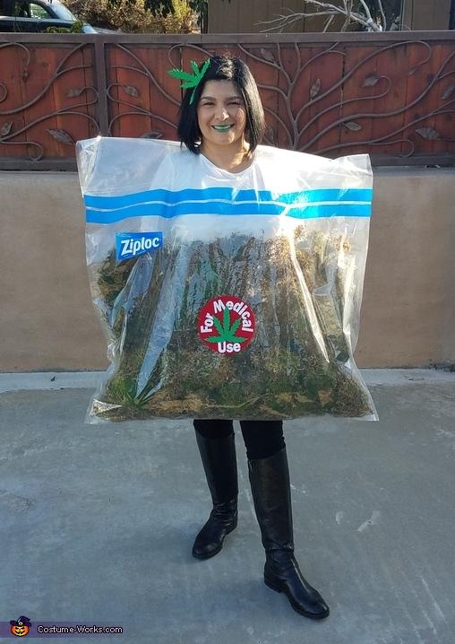 Weed Bag Costume