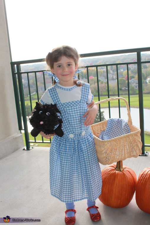 Dorothy, We're off to see the Wizard Costume