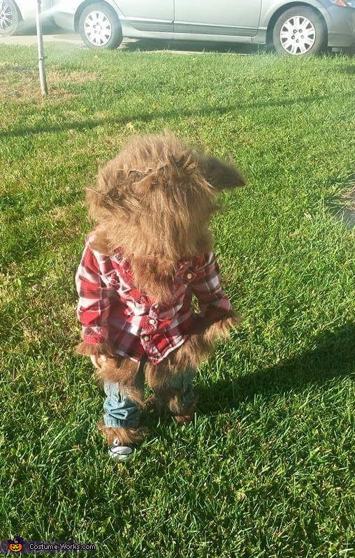 Werewolf Baby Homemade Costume