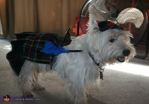 West Highland Games Costume