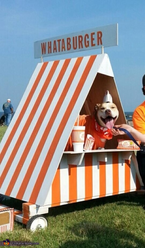 Happiest dog ever, he makes cheeseburgers for a living!, What-A-Dog Costume