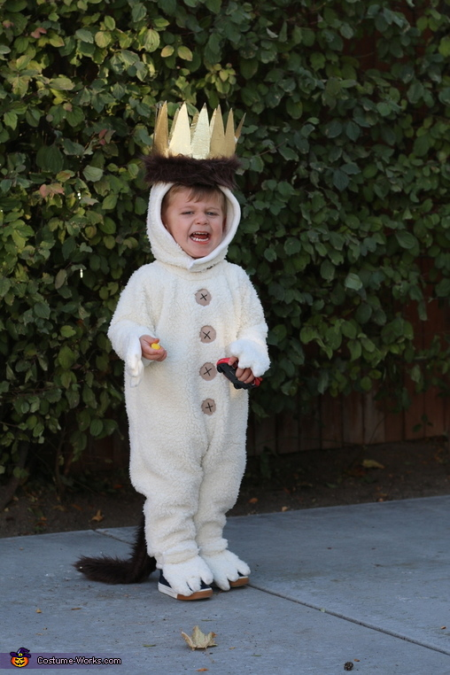 I'll eat you up I love you so, Where the Wild Things Are Costume