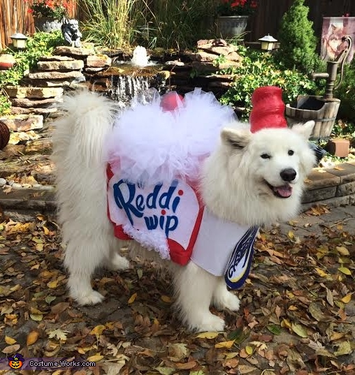 Kiss Me I'm Sweet!, Whipped Cream Dog Costume