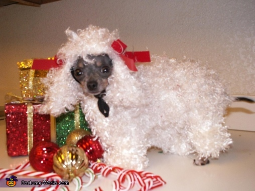White Poodle Dog Costume