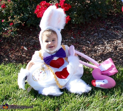 The White Rabbit Costume