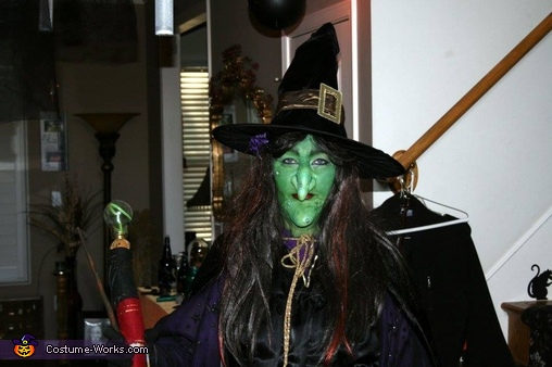 The Wicked Witch of the West, Wicked Witch Costume