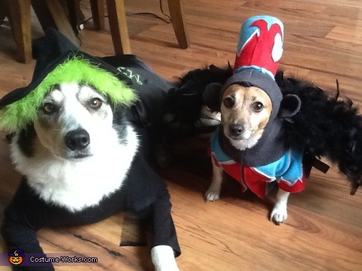 Wicked Witch and Flying Monkey Dogs Costume