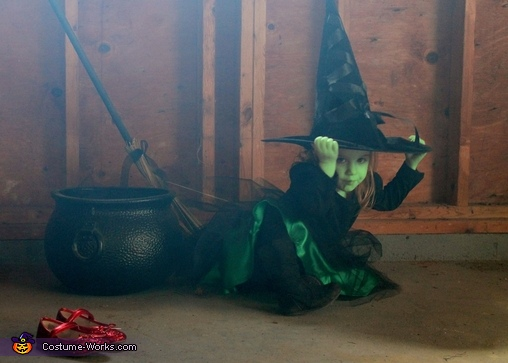 Wicked Witch from the Wizard of Oz Costume