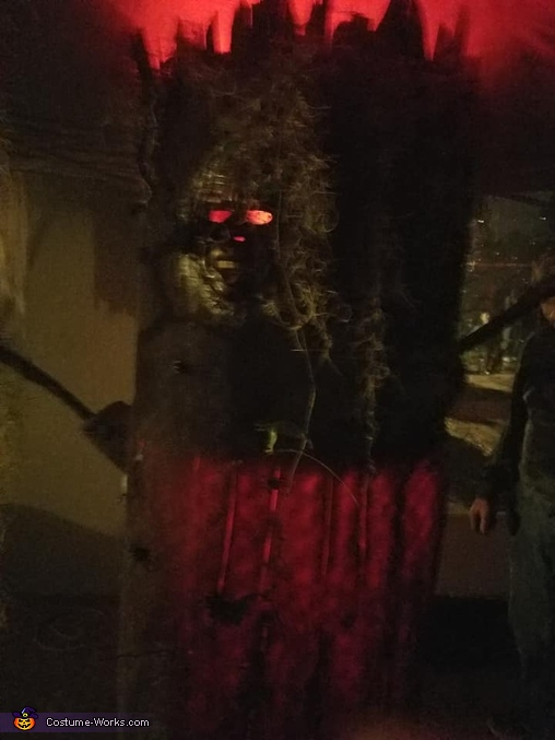 haunted tree, Wicked Witch of the Forest and Haunted Tree Costume