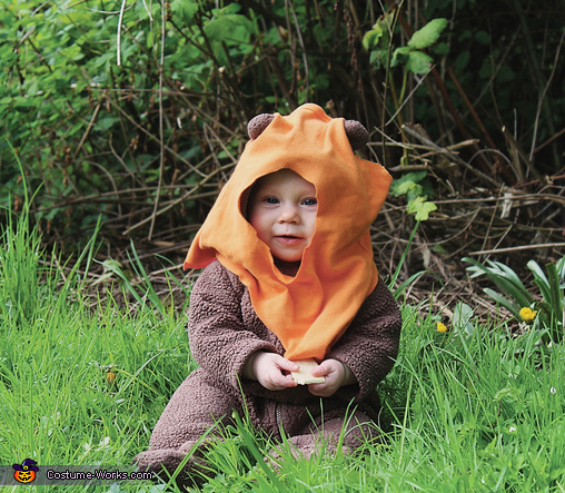 Ewok Baby Costume