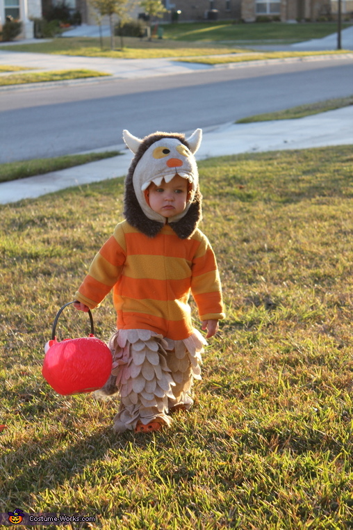 Where The Wild Things Are Carol Costume, Wild Thing Costume