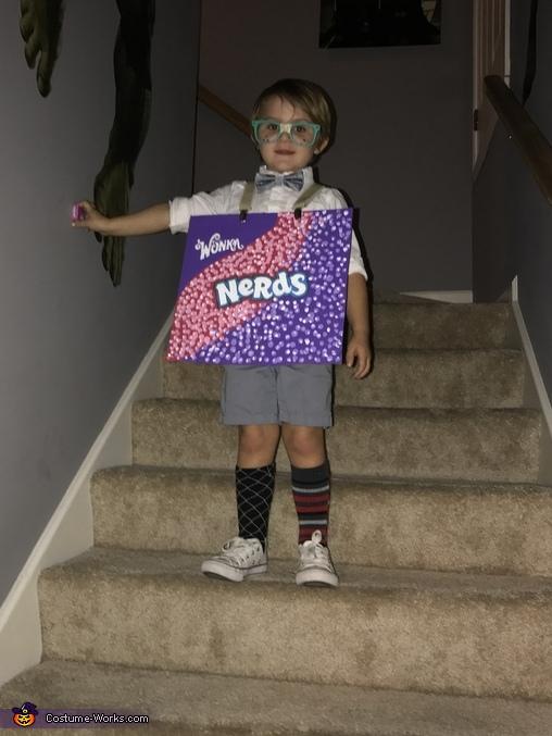 Willy Wonka and the Nerds Homemade Costume