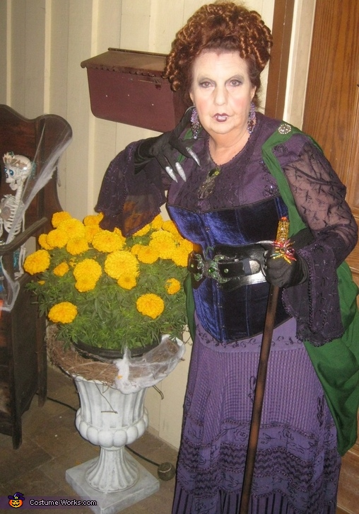 Winifred Sanderson - Hocus Pocus Movie Character Costume
