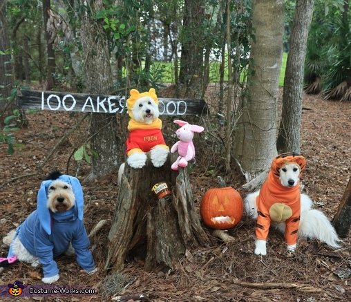 Winnie the Pooh and Friends Costume
