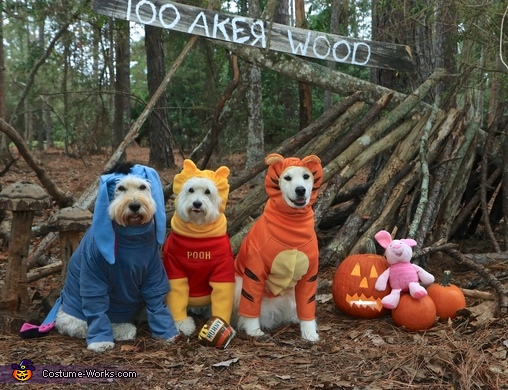 Winnie the Pooh and Friends- after the HunnyHunt, Winnie the Pooh and Friends Costume