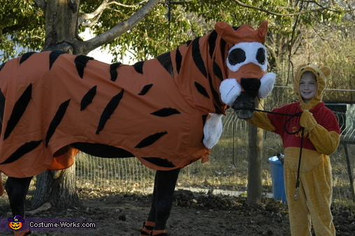 Winnie the Pooh and Tigger Too - Homemade costumes for kids