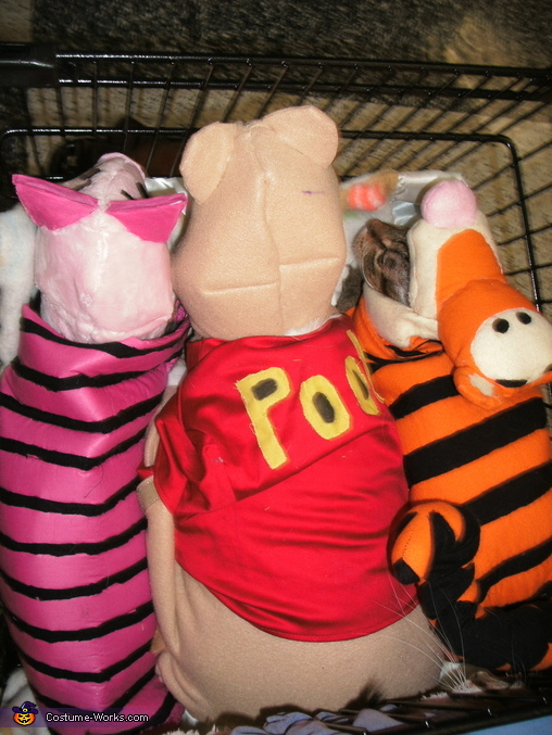 Winnie the Pooh Characters Costume