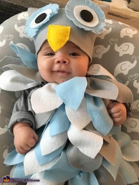 Wise Baby Owl Costume