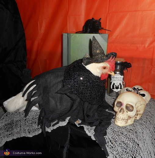 Witch Chicken Costume