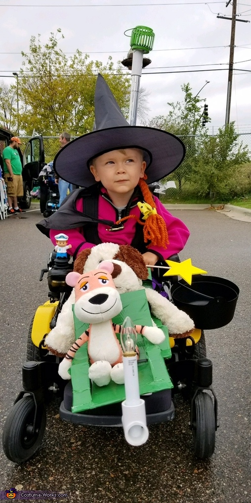 Witch from Room on the Broom Costume