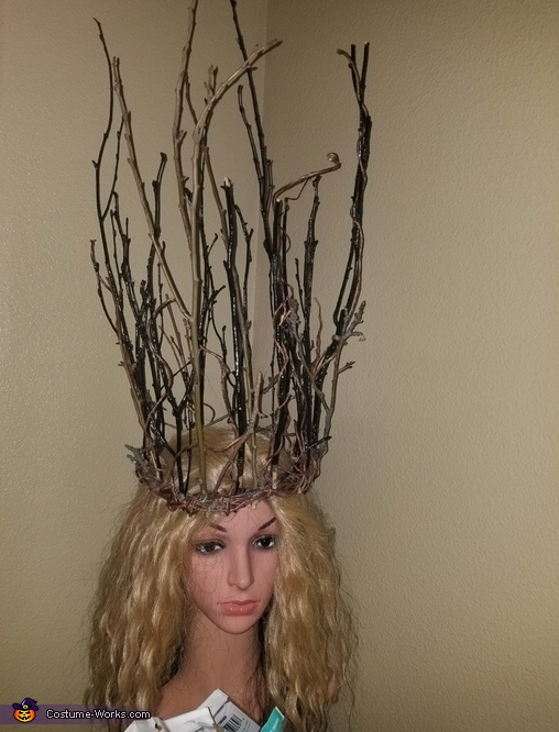 Witch of the Forest Homemade Costume