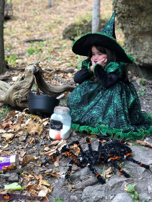Witches Brew Baby Reveal Homemade Costume