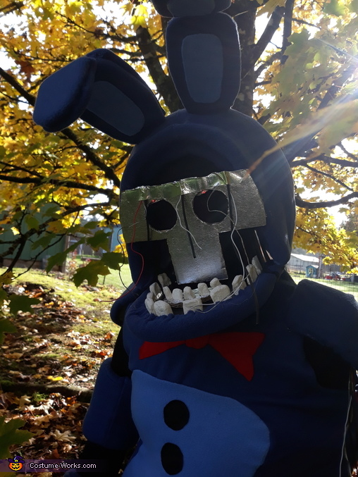 Close up Withered Bonnie, Withered Bonnie Costume