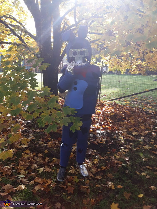 Withered Bonnie outside, Withered Bonnie Costume