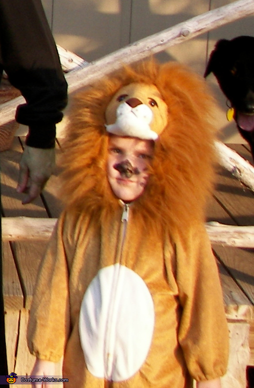Cowardly Lion, Wizard of Oz Costumes