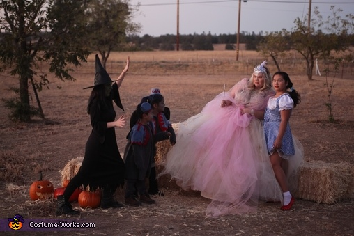 Which witch, Wizard of Oz Costume