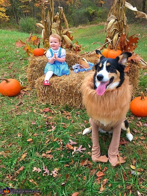 Dorothy and the Lion, Wizard of Oz Costume