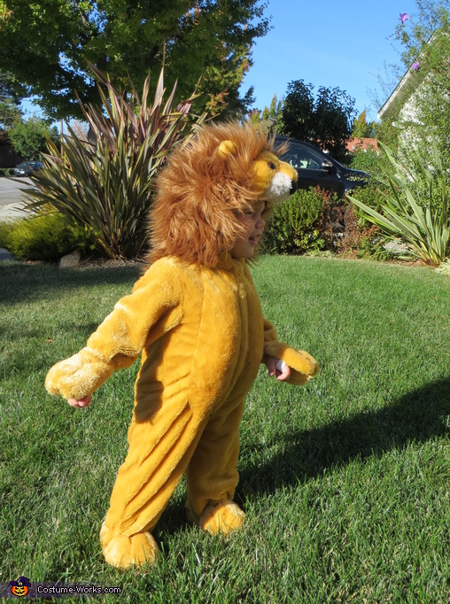 The Lion, Wizard of Oz Costumes