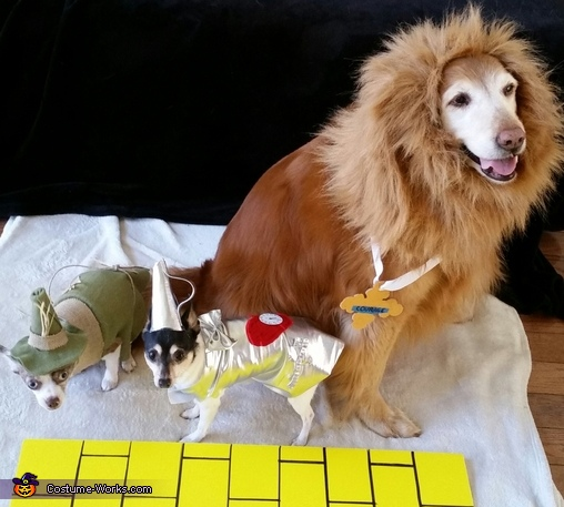 Wizard of Oz Dogs Costume