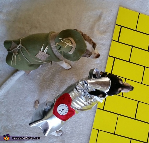io & Ave, Wizard of Oz Dogs Costume