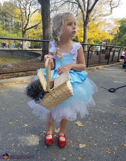 DOROTHY, Wizard of Oz Family Costume