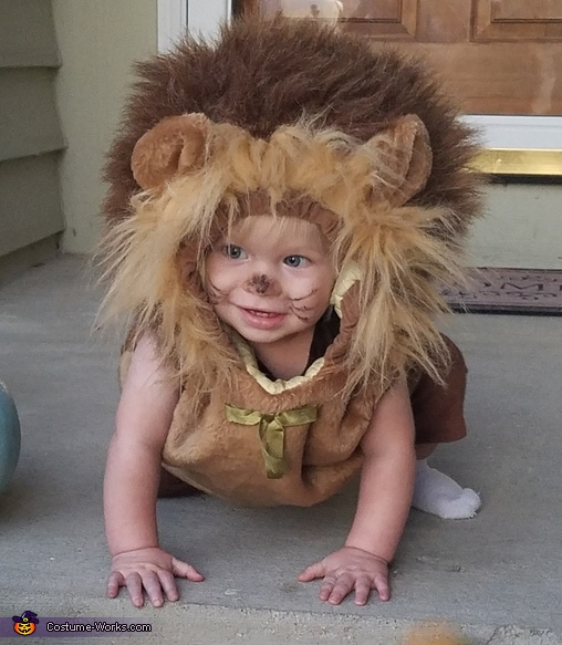 Lion, Wizard of Oz Family Costume