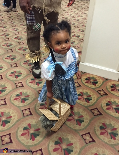My little dorthy, Wizard of Oz Family Costume