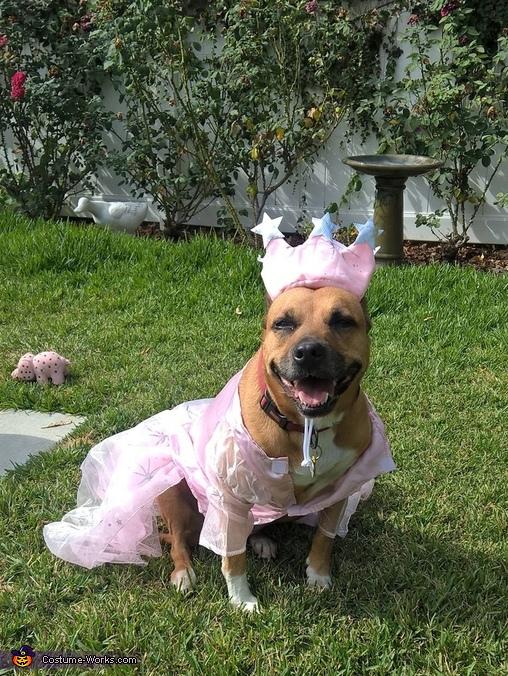 Wizard of Oz Glinda Costume