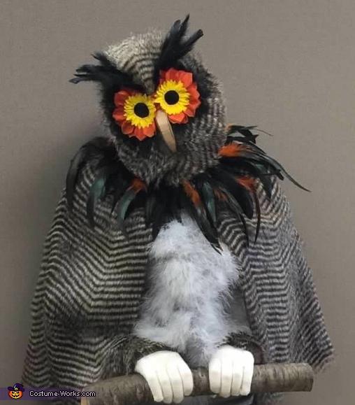 Woodland Owl Costume