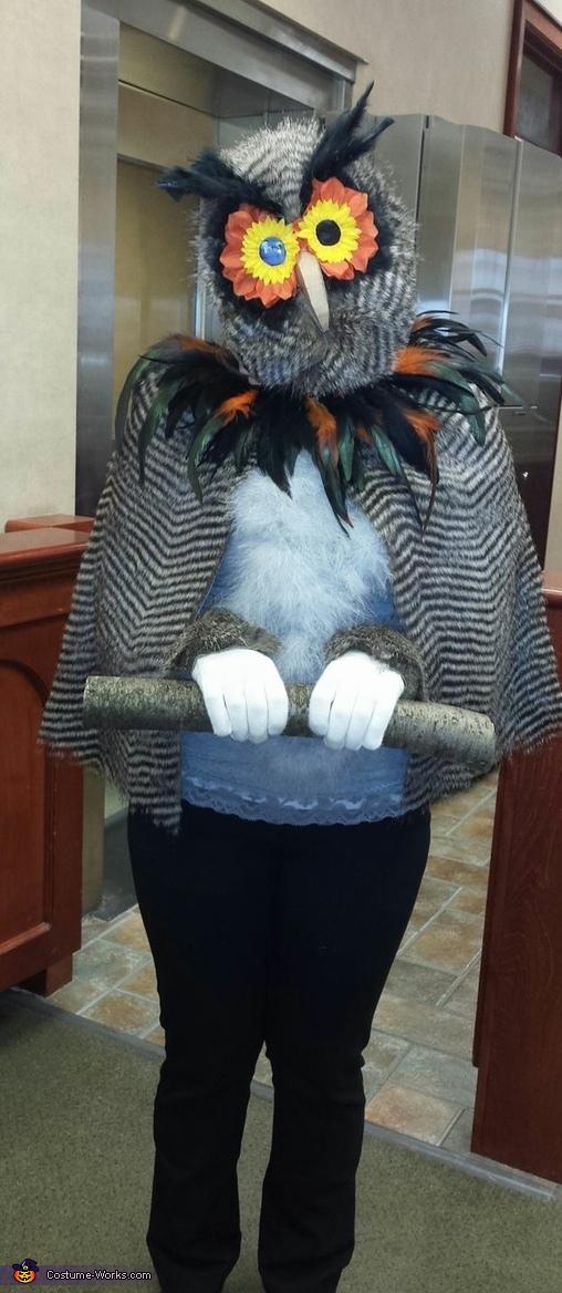 Woodland Owl 2, Woodland Owl Costume