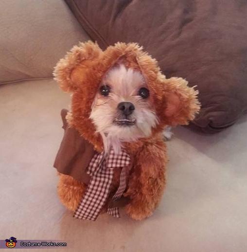 Wookie Costume