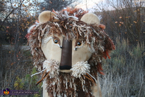 Yarn Lion Homemade Costume